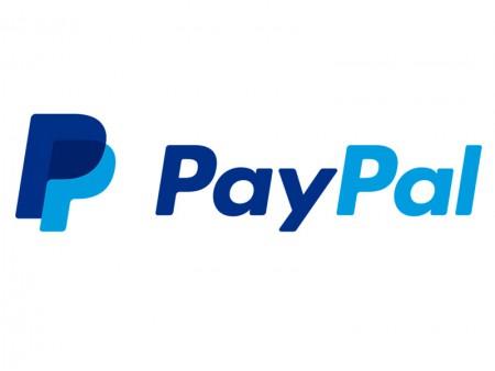 Paypal (betaalmethoden)